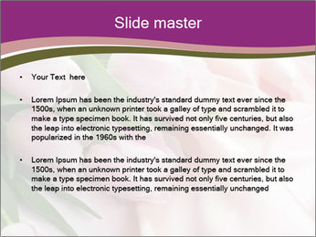 Pink Silky Tulips PowerPoint Template