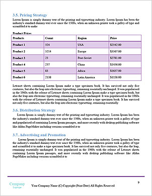 0000021889 Word Template - Page 9