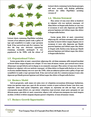 0000022124 Word Template - Page 4