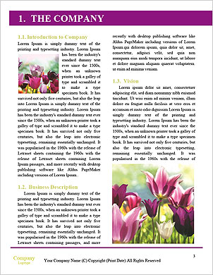 0000024392 Word Template - Page 3