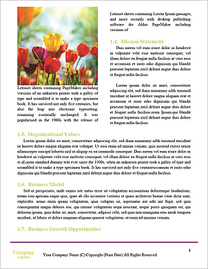 0000024392 Word Template - Page 4