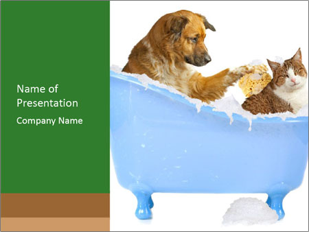 Funny Cat And Dog Taking Bath Powerpoint Template Infographics Slides