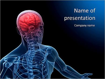 Anatomie Gehirn Animierte Vorlagen für PowerPoint - Slide 1
