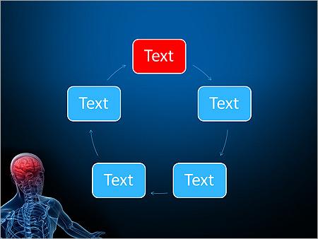 Anatomie Gehirn Animierte Vorlagen für PowerPoint - Slide 13
