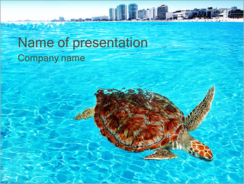 Tortilla In The Sea PowerPoint Template