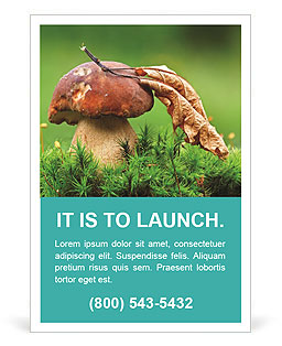 Mushroom In The Grass Ad Template