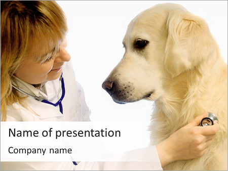 Dog At Vet Clinic PowerPoint Template & Infographics Slides Free Veterinary Newsletter Templates on veterinary referral form template, we love your pets template, veterinary job application template, veterinary new client form template, veterinary newsletter ideas, veterinary medical form template,