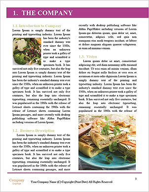 0000032790 Word Template - Page 3