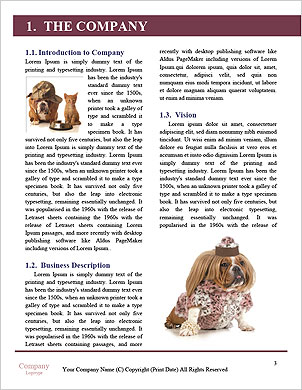 0000032949 I pattern lessicografici - Pagina 3