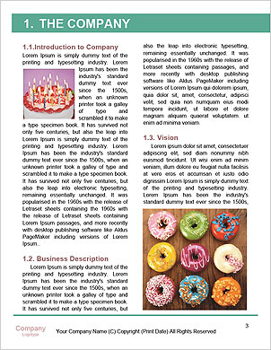 0000032961 Word Template - Page 3