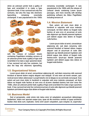 0000037104 Word Template - Page 4