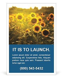 Sunflowers In The Orchard Ad Template