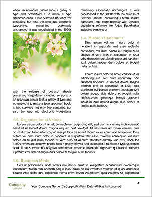 0000050338 Word Template - Page 4