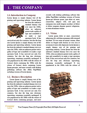 0000050348 Word Template - Page 3