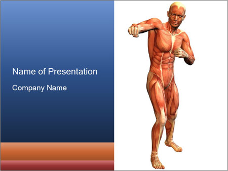 0000050412 PowerPoint Template