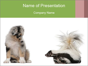 0000050432 PowerPoint Template