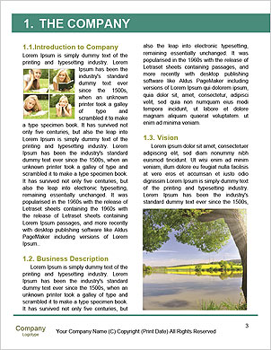 0000050552 Word Template - Page 3