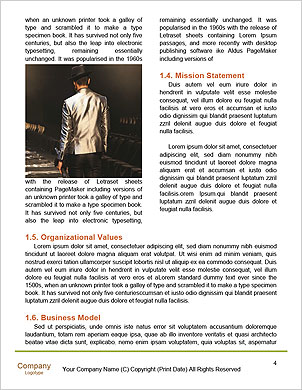 0000050903 Word Template - Page 4