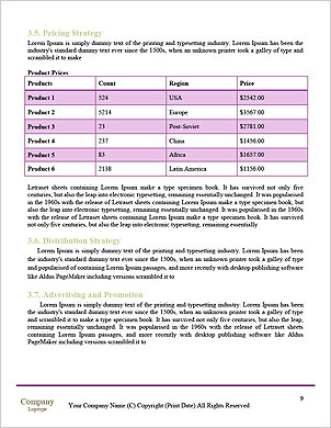 0000051038 Word Template - Page 9