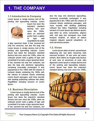 0000051231 Word Template - Page 3