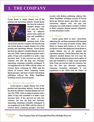 0000051299 Word Template - Page 3