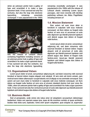 0000052313 Word Template - Page 4