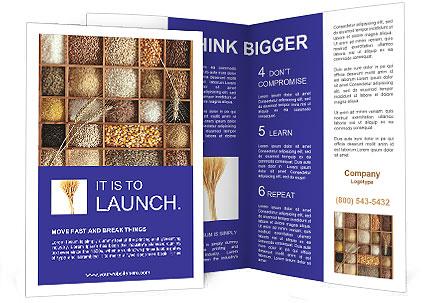 0000053095 Brochure Template