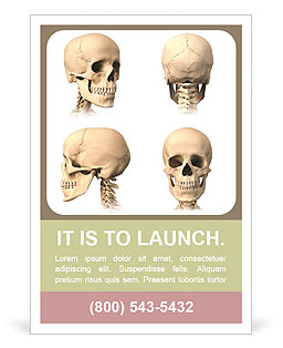 Skull Of Human Ad Template