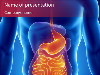 Digestive System PowerPoint Template