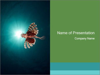 Rare Lionfish PowerPoint Template