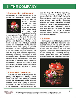 0000065153 Word Template - Page 3