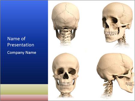 Detailed Human Skull PowerPoint sunum şablonları