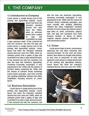 0000065405 Word Template - Page 3