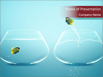Two Aquariums PowerPoint Template
