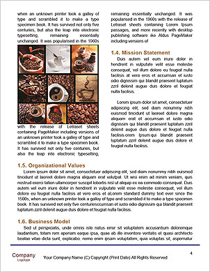 0000065563 Word Template - Page 4