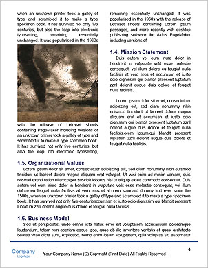 0000065634 Word Template - Page 4