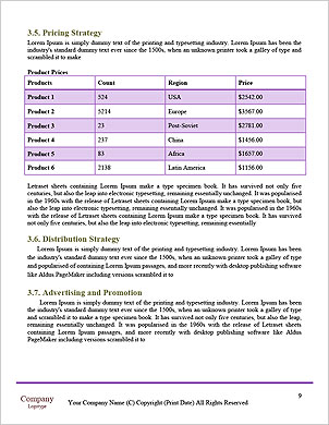 0000065799 Word Template - Page 9