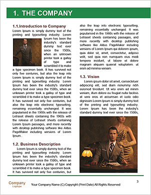 0000065922 Word Template - Page 3