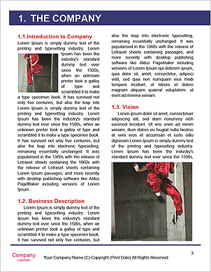 0000067394 Word Template - Page 3