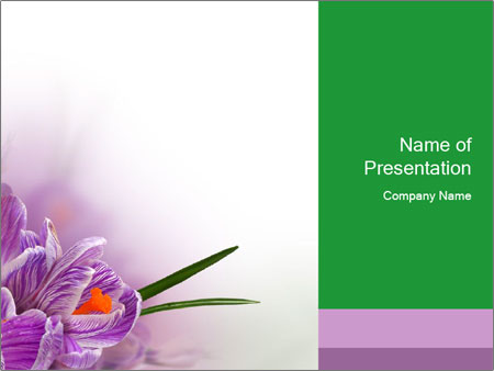 Flowers for Mother's Day PowerPoint Template & Infographics Slides