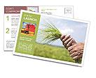 Hand Buğday Posta kartları