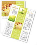 Autumn Beauty Newsletter Template