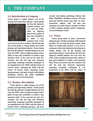 0000073122 Word Template - Page 3