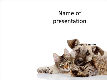 Friendship Of Cat And Dog Powerpoint Template Backgrounds Google