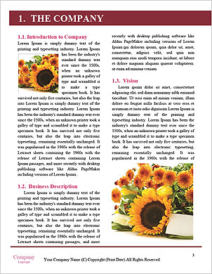 0000083898 Word Template - Page 3