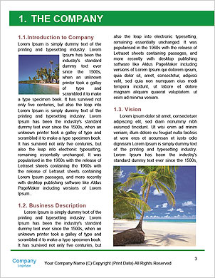 0000087234 Word Template - Page 3