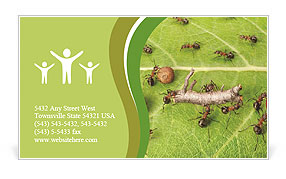 Dividing line and cargo traffic at ants work path in anthill, teamwork Business Card Template