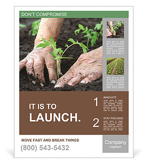 Planting a tomatoes seedling Poster Template