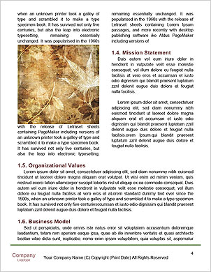 0000090291 Word Template - Page 4