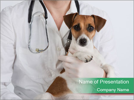 Vet Hospital PowerPoint Template & Infographics Slides on veterinary referral form template, we love your pets template, veterinary job application template, veterinary new client form template, veterinary newsletter ideas, veterinary medical form template,